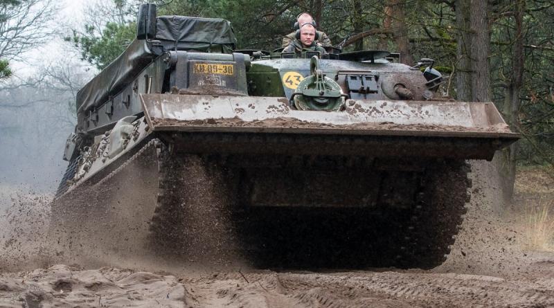 Leopard in het terrein